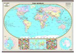 World Wall Map  (small)