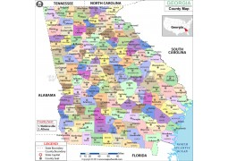 Georgia County Map - Digital File