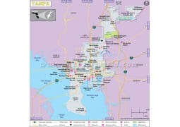 Tampa City Map - Digital File