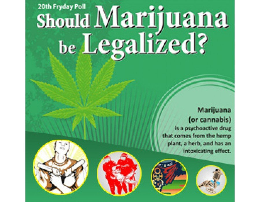 drugs should not be legalized thesis Argumentative essay on marijuana legalization i wonder why it's not legal why is it that this drug has become illegal all over the world.