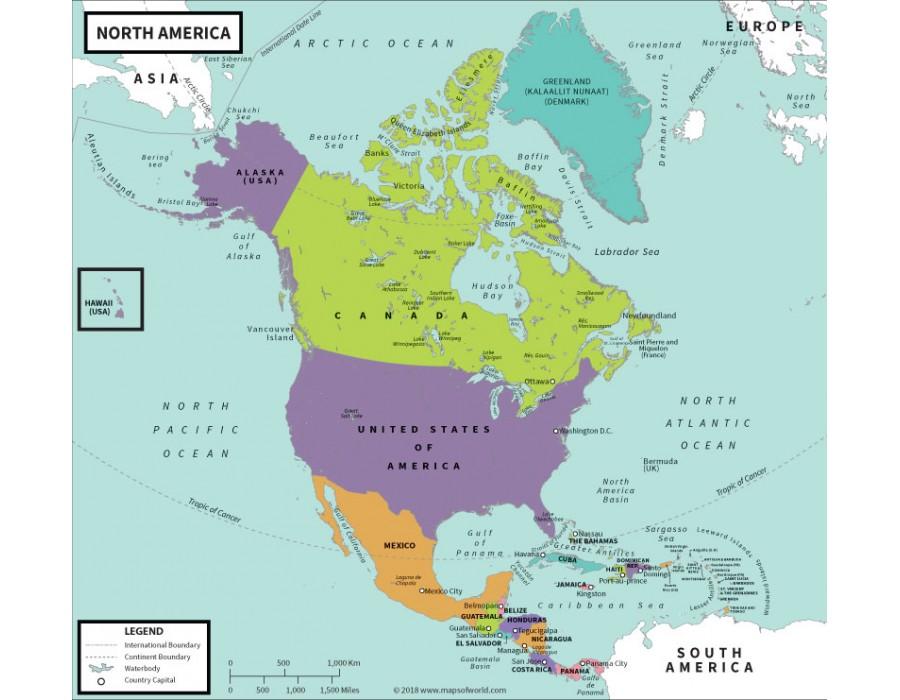 Buy North America Political-Map Vivid