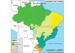 Brazil Biodiversity Map - Digital File