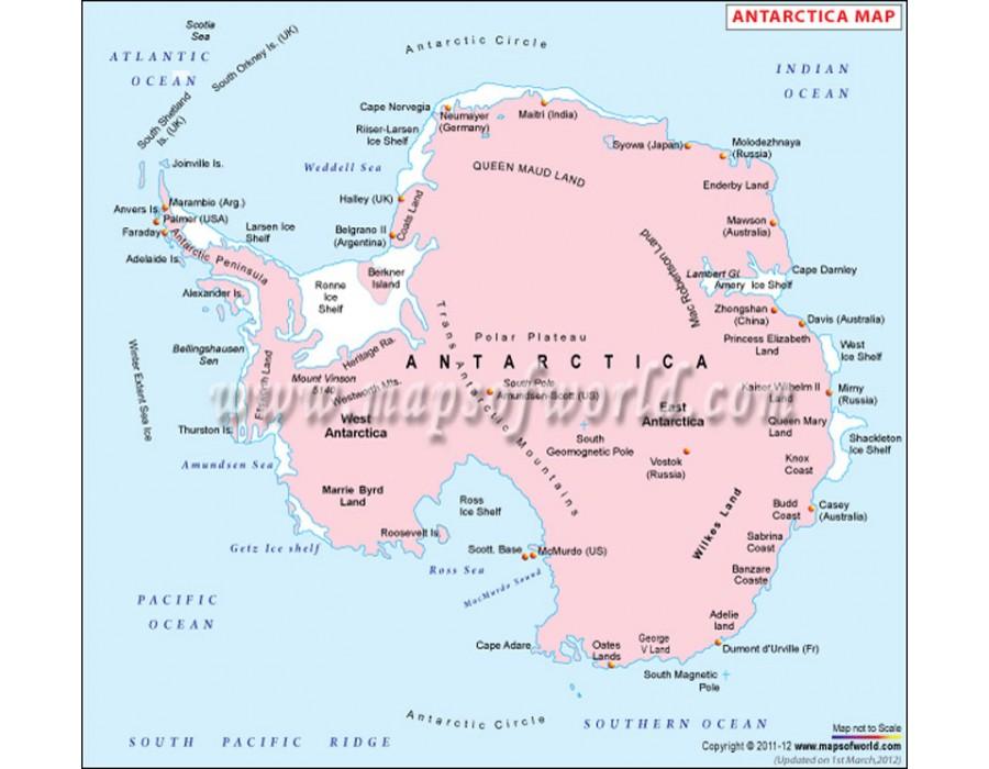 Buy Antarctica Political Map