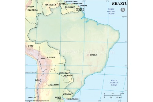 Brazil Dark Green Blank Map