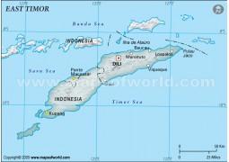 East Timor Physical Map, Gray - Digital File