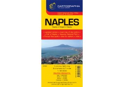 City Map of Naples by Cartographia