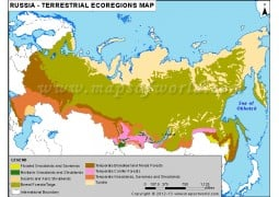 Russia Terrestrial Ecoregions Map - Digital File