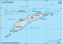 East Timor Physical Map, Gray